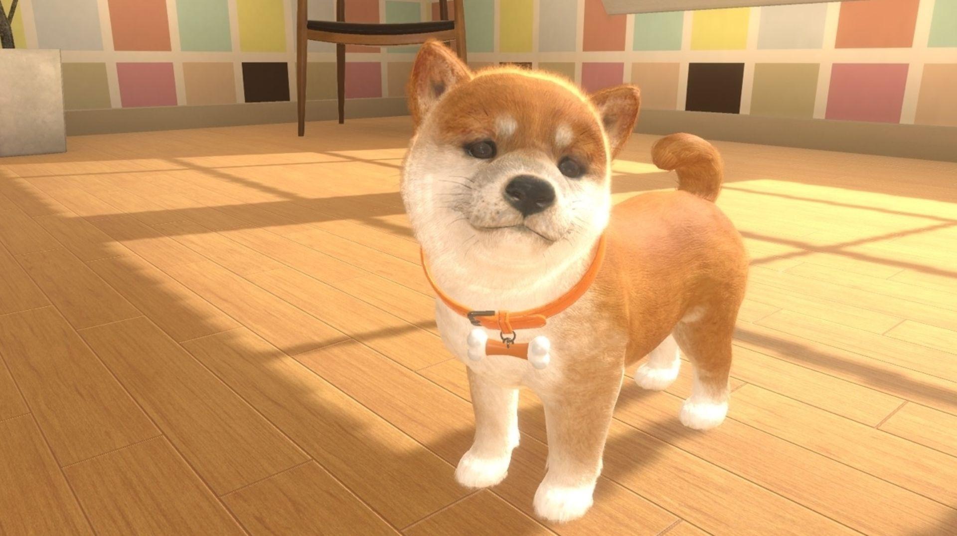Animate a adoptar una mascota virtual